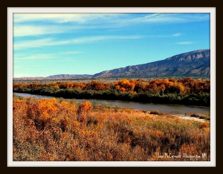 Fall Color Along Albuquerque's Rio Grande