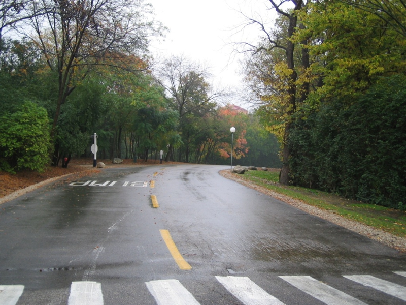 A wet road winds through Four Lakes