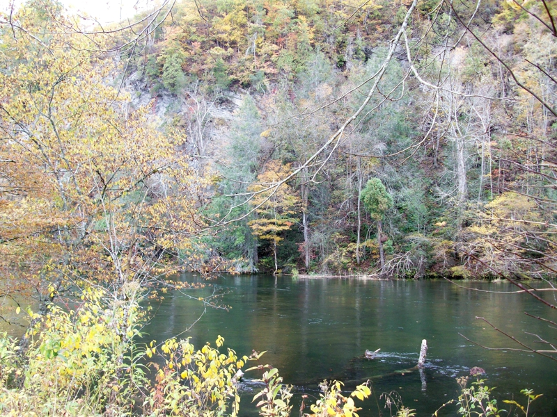 South Holston River Property For Sale