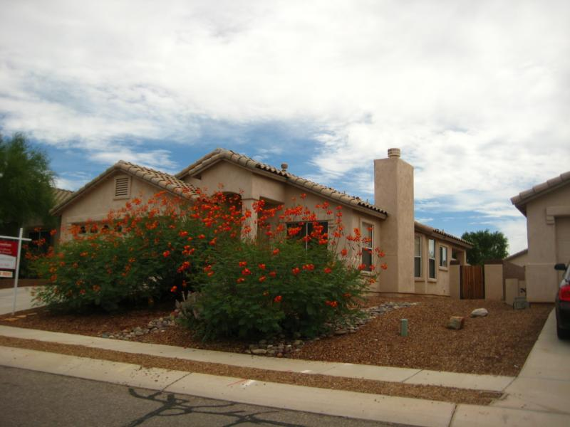 One story Home for sale in Dove Mountain, Marana, AZ