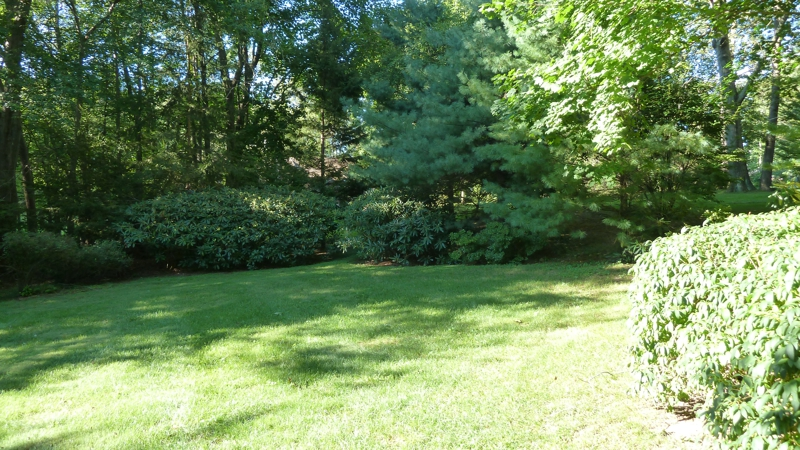 Land on Gerrish Lane in New Canaan CT 06840