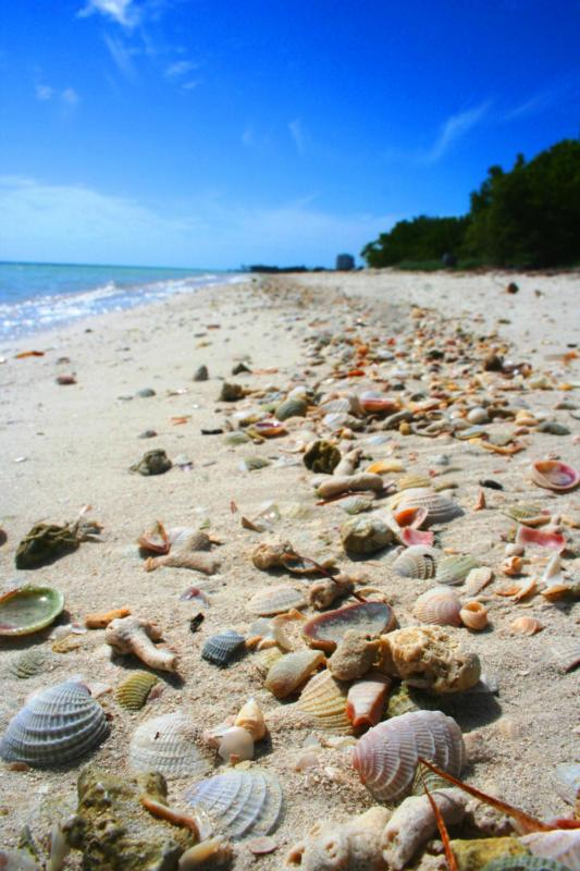 coco plum beach marathon florida keys real estate