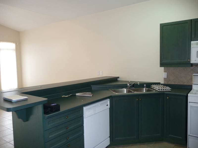 Hunter Kitchen Cabinets ~ All i did was paint out the green elephant in kitchen