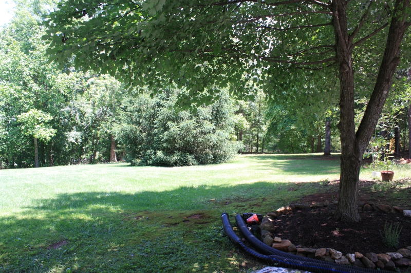 house for sale in culpeper