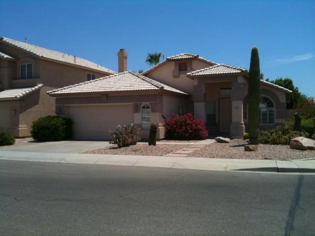 Three and Four Bedroom Homes With Pool For Sale In Wild ...