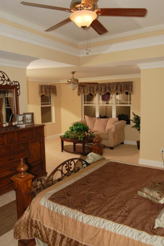 Awe Inspiring Trey Ceiling Ideas For Your New Home Master Bedroom Beutiful Home Inspiration Ponolprimenicaraguapropertycom