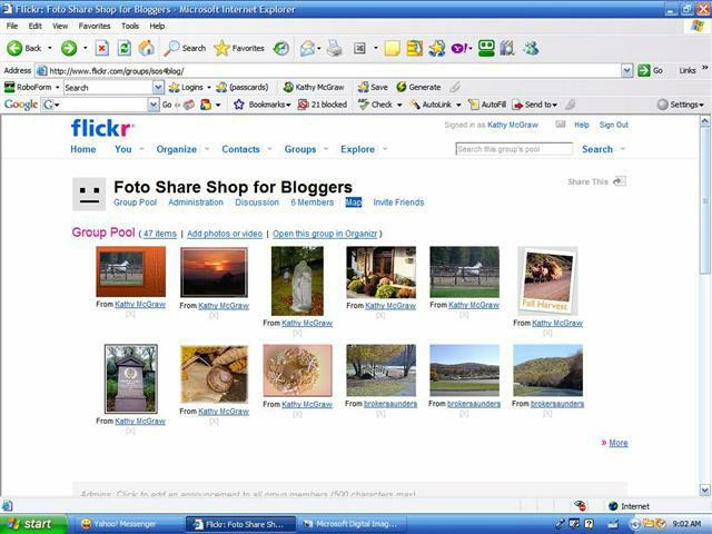 Flickr Group Screen Shot