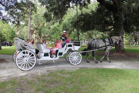 homes for sale in brunswick ga - carriage rides on jekyll island ga
