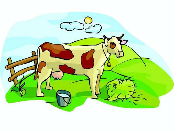 cow essay for kids Cow essay for kids in english the cow essay for class 1 school essay on cow for grade , the cow essay for school kids simple essay on cow for class/grade 1 4 students write cow essay in exam 192.
