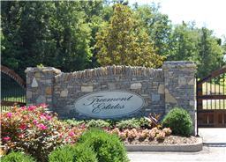 Treemont Estates Franklin Tn Real Estate Treemont