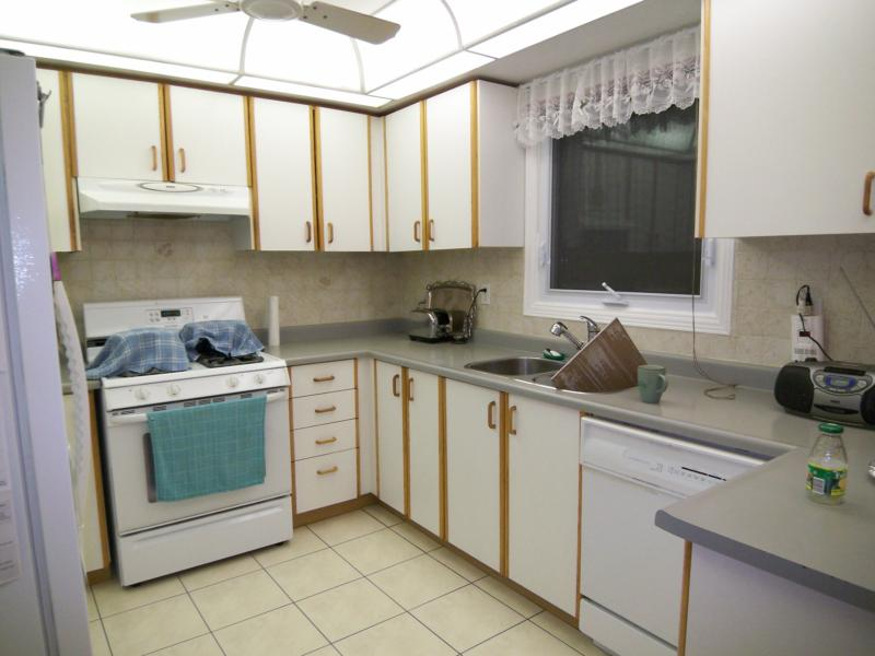How To Paint Formica Kitchen Cabinets Joannerowe
