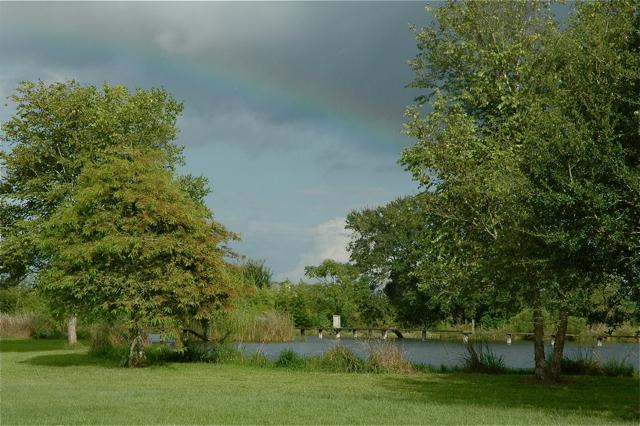 Rainbow over our pond
