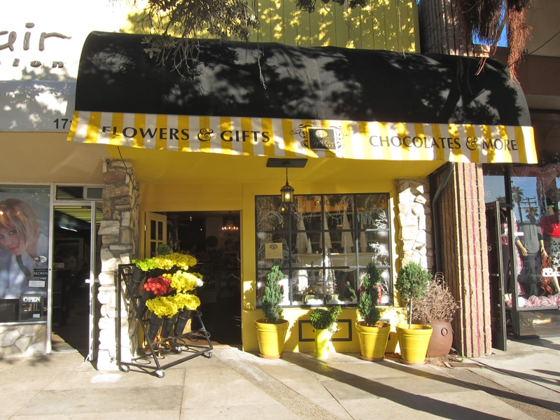 The Yellow Door Storefront