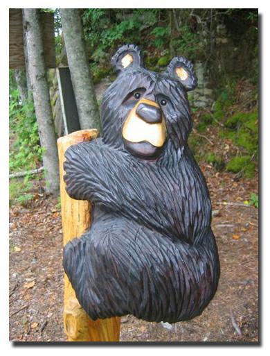 Loveable north carolina bears