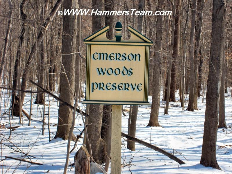 Emerson NJ