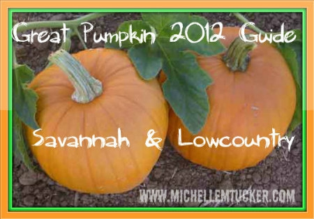 Savannah Pumpkin Patch