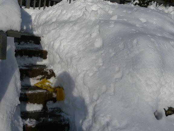 Shoveled Steps