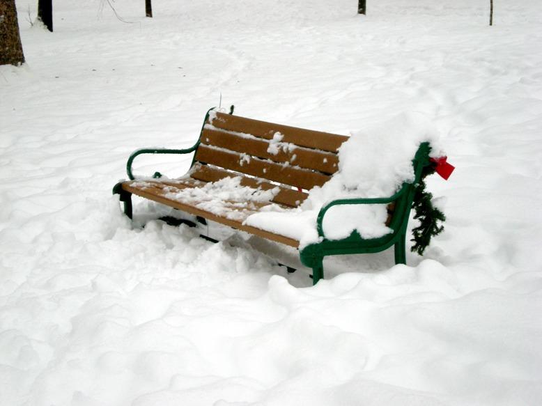 Diary Of A Snow Shoveler Funny