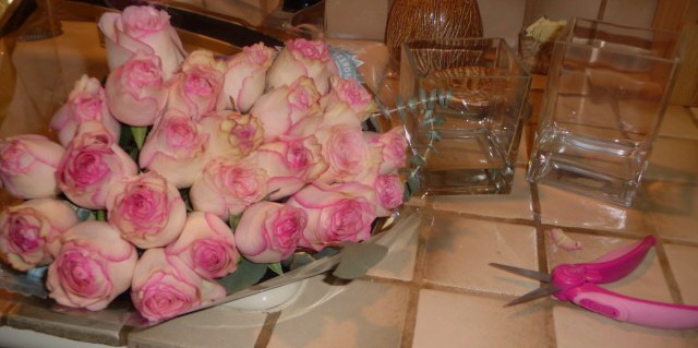 Roses Waiting HomeRome 410-530-2400