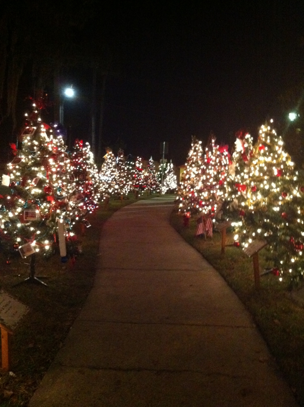Parade of Trees in Green Cove Springs Fl