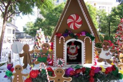 Gingerbread house for sale San Jose Calif. Michelle Carr Crowe
