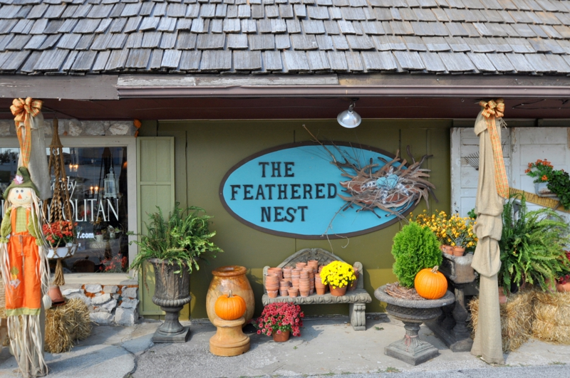 Fall Fall Open House at the Feathered Nest Ozark Mo