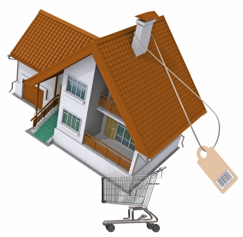 Residential home in shopping cart