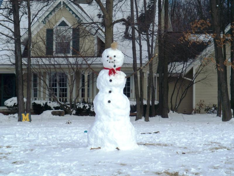 Snowman in my neighborhood