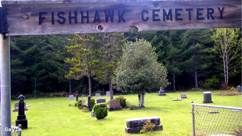 Fishhawk Cemetery-Gayle Rich-Boxman Copyrighted All Rights Reserved 2015