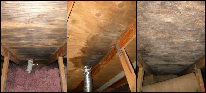 Examples of the damage an improperly terminated bathroom exhaust fan duct can cause.