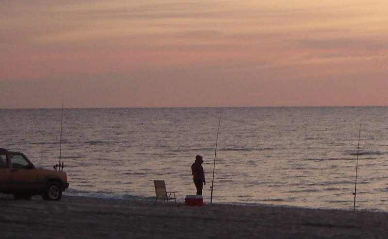 Surf fishing on long beach island there 39 s still money to for Surf fishing nj