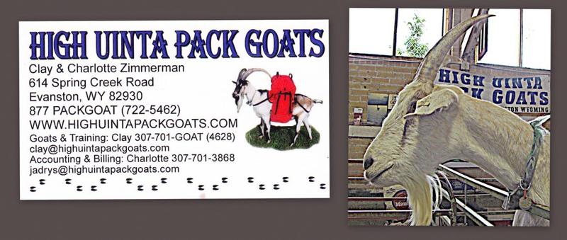High Uinta Pack goats