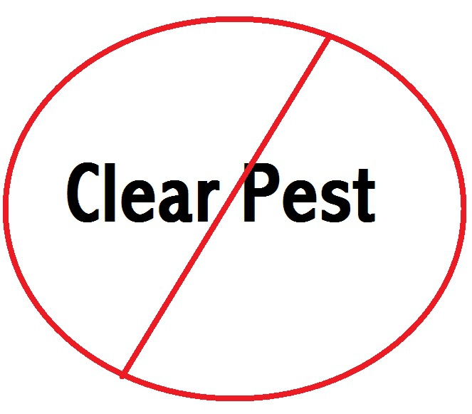 No Such Thing as a Clear Pest Wenatchee Home Inspection