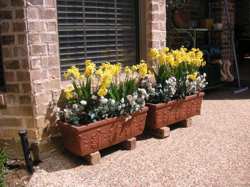 These Are Artificial Bulb Type Flowers Mixed In With Little Roses To Dress  Up Window Boxes.....The Roses Iu0027ve Had In Those Flower Boxes For Three  Years And ...