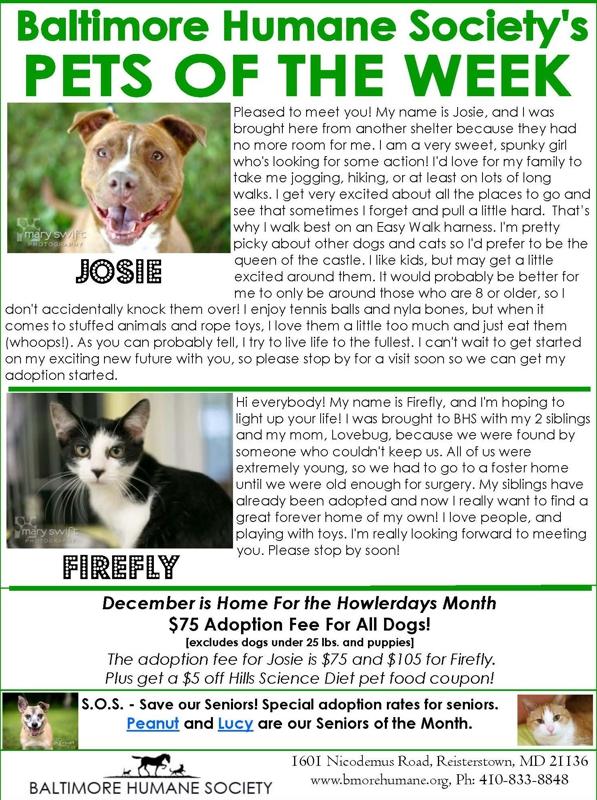 Baltimore Humane Society