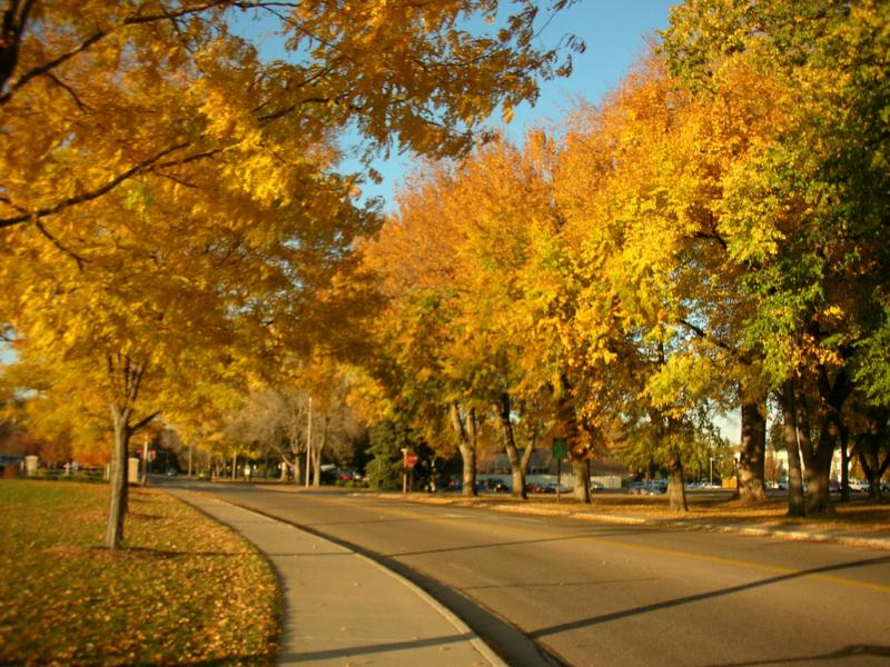 Autumn in Fort Collins