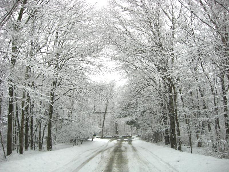 snow scene in Wilton CT 06897