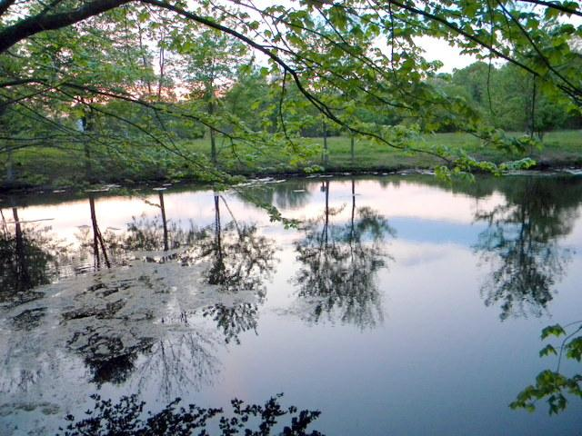 A Franklin Farm pond at sunset