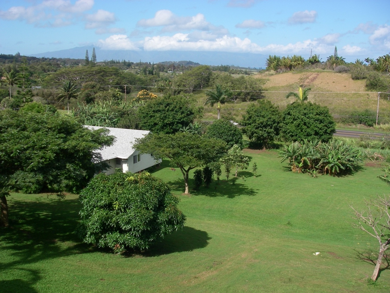 Haiku Maui HI 96708 - house and cottage on 2 acres for sale