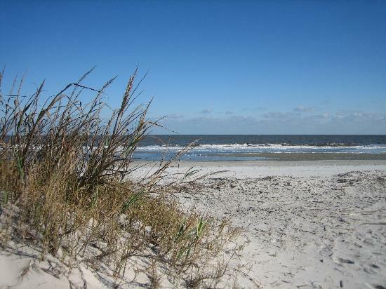 Beach Brunswick Georgia Things To Do In And The Golden Isles