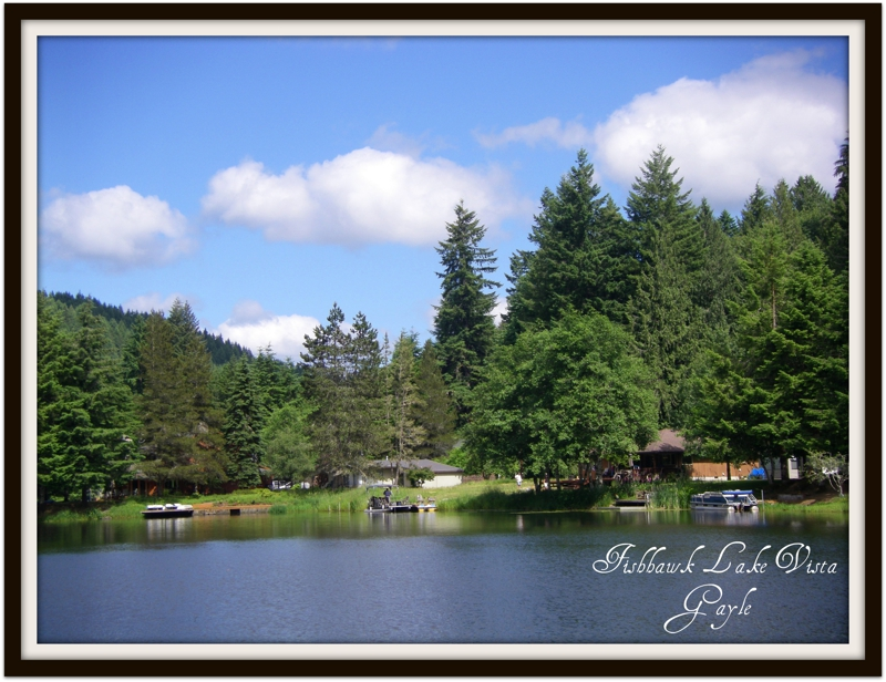 Fishhawk Lake Birkenfeld Oregon 97016