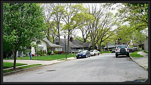 Street scene in Merrick Woods