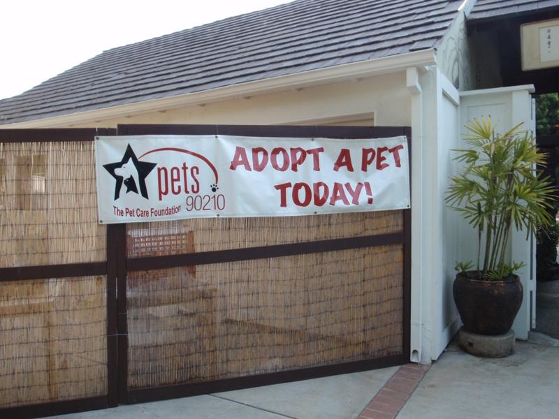 The Pet Care Foundation 90210