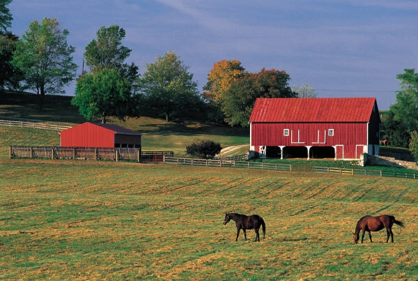 Horse Property Search PA