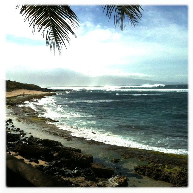 big waves today at Ho'okipa Beach Park Maui