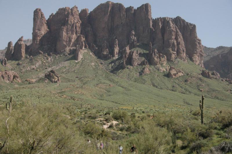 Wildflowers at the base of Superstition Mountain
