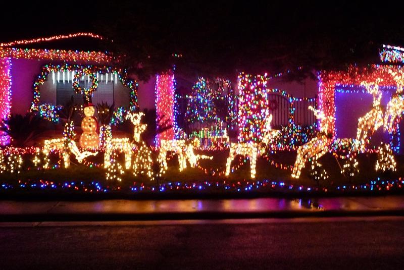Speechless Sunday - Christmas Cheer in Camden, Elk Grove CA