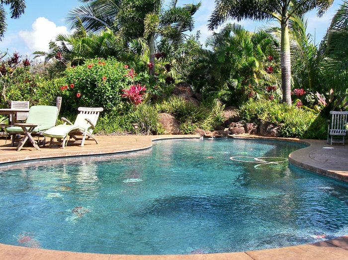 country homes with swimming pools in haiku maui hawaii see the pools