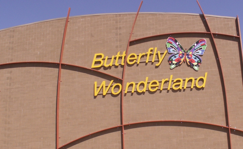America's Largest Butterfly Atrium