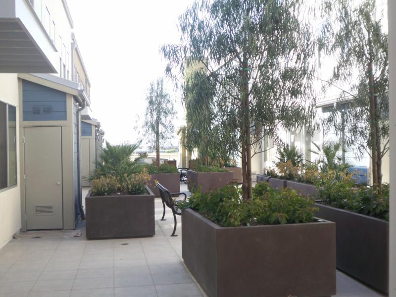 Courtyard at the Condos at Bluwater Crossing in Carlsbad
